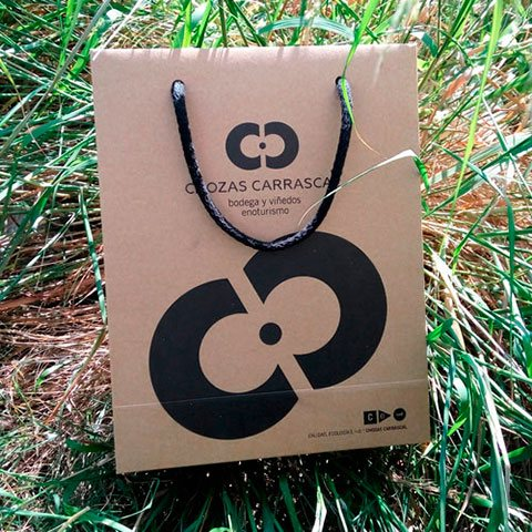 Bolsa Papel Biodegradable 4